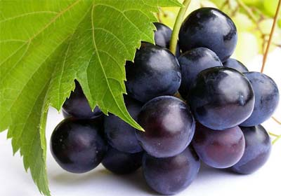 THe Science Behind the Miracle - Trans Resveratrol...